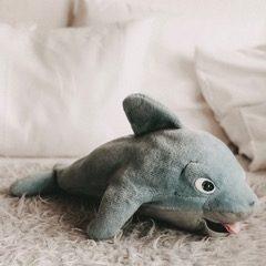 Delfinklasse