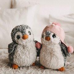 Pinguinklasse